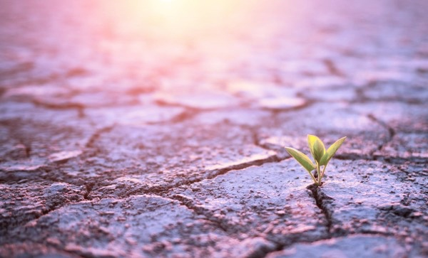Resilience, Strength, Personal Growth